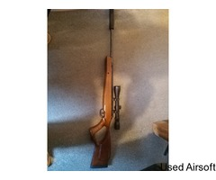 Remington TH Sabre .22 Springer